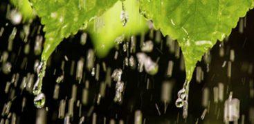rain-400x195